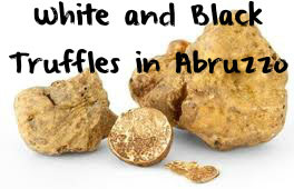 White-and-Black-Truffles-in-Abruzzo