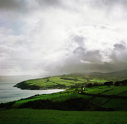 Northern-Ireland-Country-Side