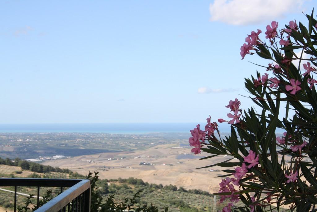 landscape-of-furci