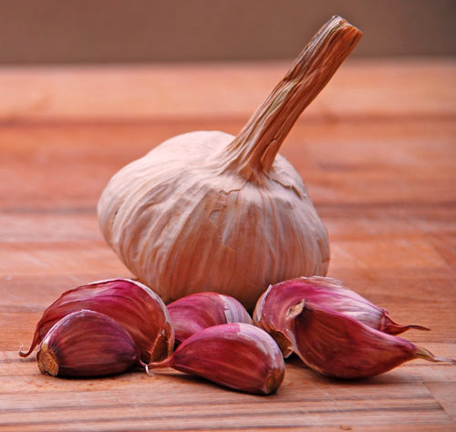 red-garlic