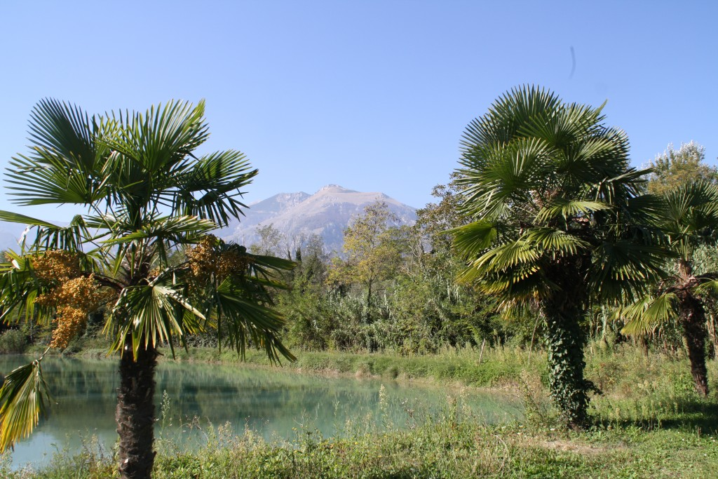 lake-casoli-ch (2)