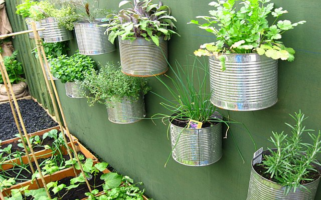 Decorate-with-the-cans-of-tin-as-planters-to-hang-the-wall