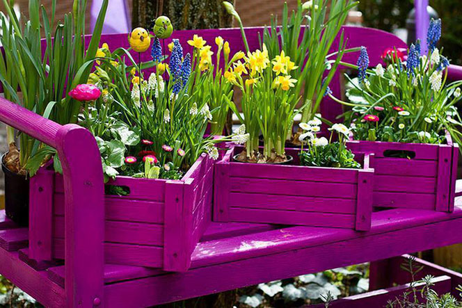 How-transform-a-box-of-fruit-in-planter-simple-and-economic