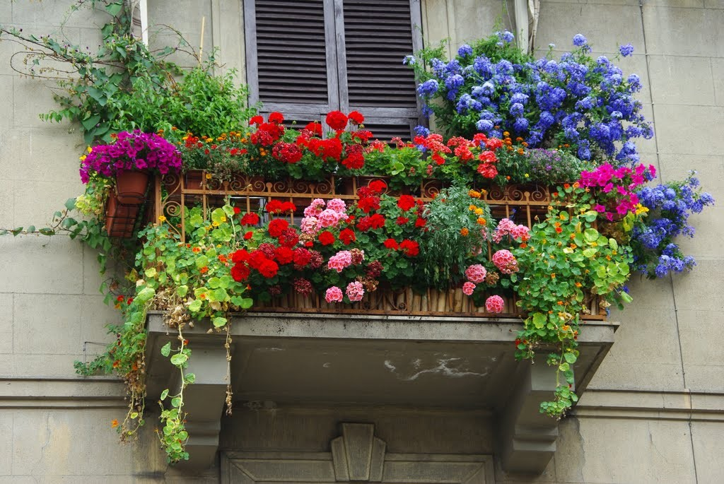 How to decorate the balcony or the terrace of your dreams for How to decorate terrace with plants