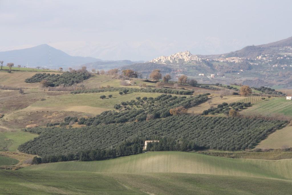 panoramic-of-mafalda