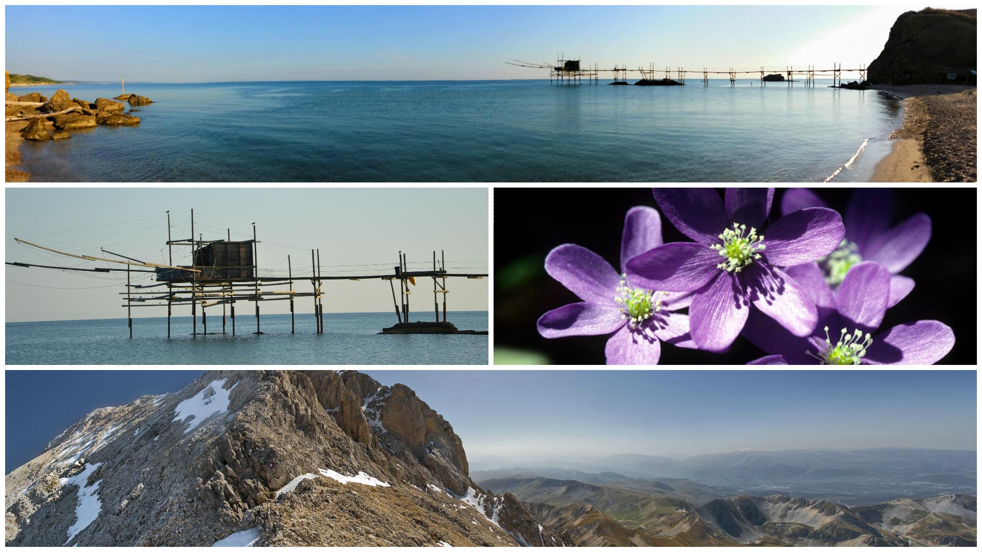 property-near-sea