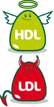cholesterol HDl